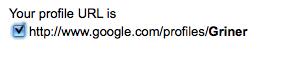 Google Profile URL